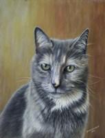 Pickles the Cat Fine Art Print