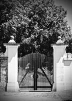 Wooden Gate Black and white Fine Art Print