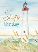 East Coast Lighthouse portrait II-Seas the day Framed Print
