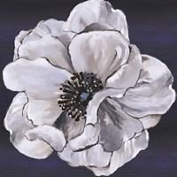 Blue & White Floral IV Fine Art Print