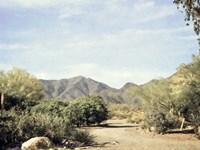 Desert Path Fine Art Print