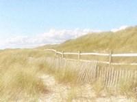 Seagrass Dunes Fine Art Print