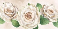 Ivory Roses Landscape I Fine Art Print