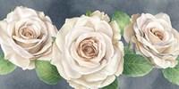 Ivory Roses on Gray Landscape I Fine Art Print