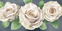 Ivory Roses on Gray Landscape II Fine Art Print