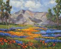 Carmel Spring Fine Art Print
