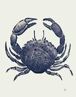 Ocean Finds V Navy Fine Art Print