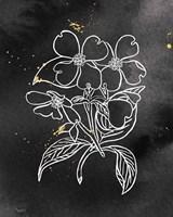 Indigo Blooms III Black Framed Print