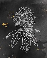 Indigo Blooms II Black Framed Print
