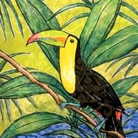 Tropical Bird II Fine Art Print
