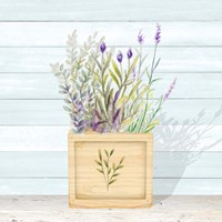 Lavender and Wood Square IV Framed Print