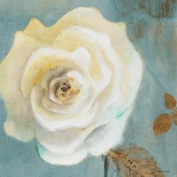 Late Summer Roses Fine Art Print