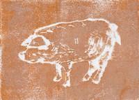 Country Pig Framed Print