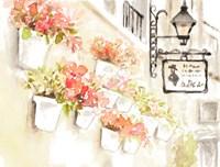 Paris Flowerpots Fine Art Print