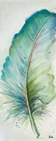 Watercolor Feather IV Fine Art Print