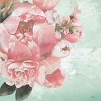Pink Peonies I Framed Print