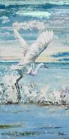Great Blue Egret I Framed Print