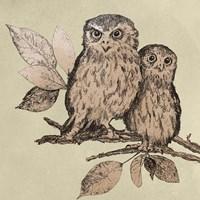 Neutral Little Owls II Framed Print