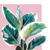 New Tropics I Fine Art Print