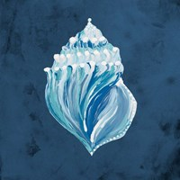 Azul Dotted Seashell on Navy II Fine Art Print
