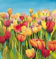Tulips in Blue Sky Fine Art Print