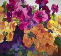 Petunias and Pansies Fine Art Print