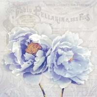 Bonjour Belle Fine Art Print