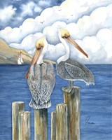 Pelicans Paradise Fine Art Print