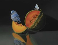 The Melon And The Blue Bird Fine Art Print