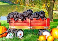 8 Lab Puppies Fine Art Print