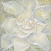 E-Motion Gardenia Fine Art Print