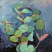 Eucalyptus at Dusk Fine Art Print