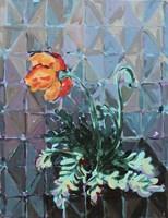 Poppy and Patterns Fine Art Print