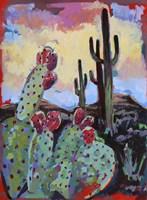 Tucson Bloom Fine Art Print