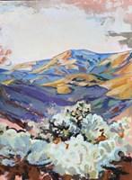 Desert Cholla at Sunset Fine Art Print