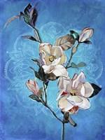 Magnolia Mandala Fine Art Print