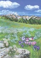 Alpine meadows Fine Art Print