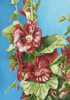 Red Holly Fine Art Print