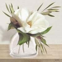 Vintage Magnolia Bloom Fine Art Print