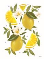 Citrus Lemon Botanical Fine Art Print