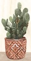Cactus in Pot 2 Framed Print