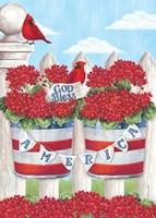 Patriotic Geraniums Fine Art Print