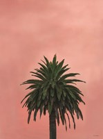 Pink Palm Framed Print