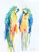 Colorful Parrots I Framed Print