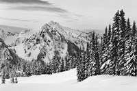 Tatoosh Range BW Framed Print