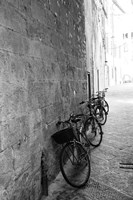 Bicycles in the Alley Fine Art Print