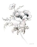 Sketchbook Garden X BW Framed Print