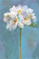 Modern Floral IV Framed Print