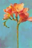 Modern Floral II Framed Print