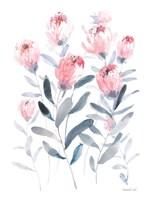 All the Protea Fine Art Print